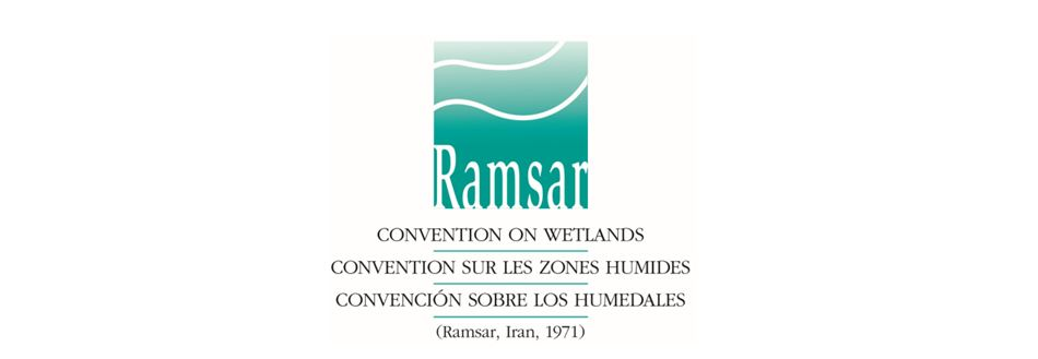 logo and name of the ramsar convention on wetlands ramsar