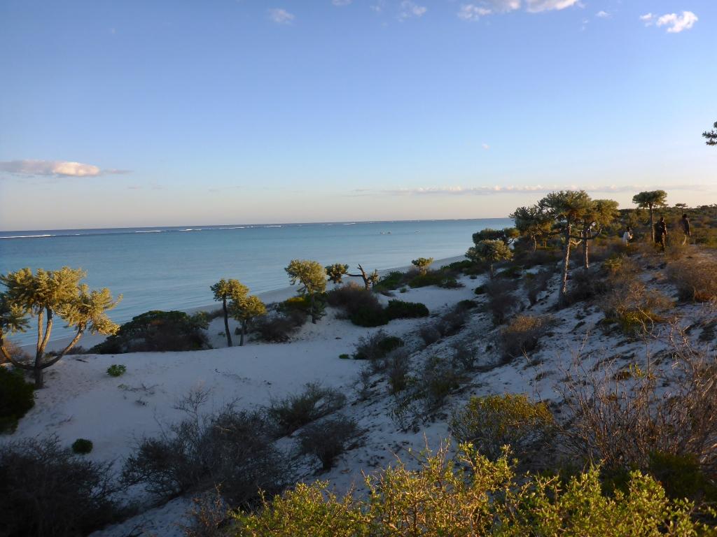 Madagascar designates five Ramsar Sites on World Wetlands ...