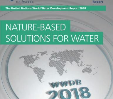 Image result for un wwd 2018 nature based water solution report