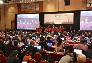 COP12 delegates in the plenary room