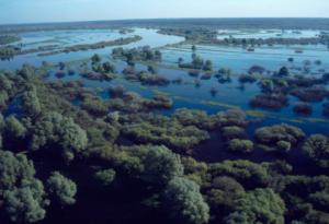Dnieper river floodplain
