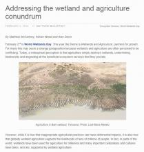 World Wetlands Day 2014 CGIAR Article