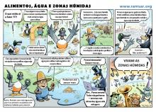 World Wetlands Day 2014 Portugal Cartoon