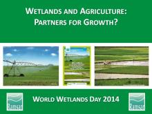 World Wetlands Day 2014 PowerPoint