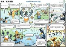 World Wetlands Day 2014 China Cartoon