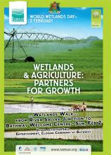 World Wetlands Day 2014 Grenada Poster