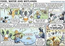 World Wetlands Day 2014 Cartoon English