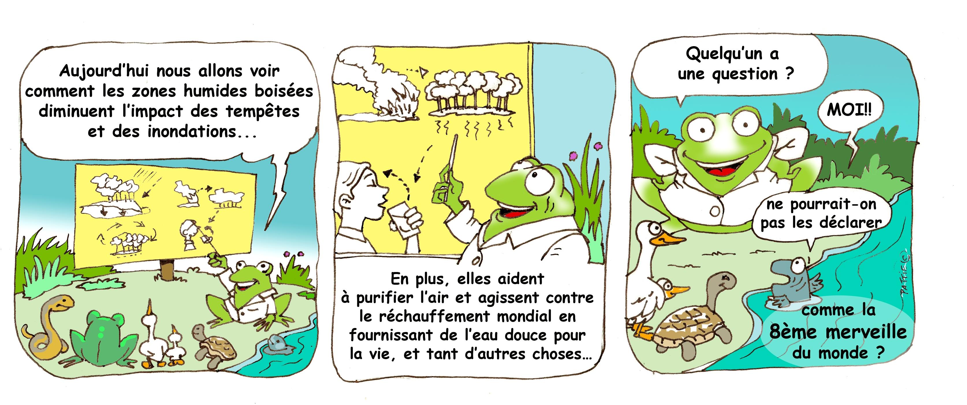 Ecology comic strip franch
